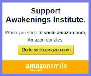 Support Awakenings Institute